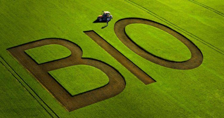 4a86443a199 Quel avenir pour l agriculture biologique en France