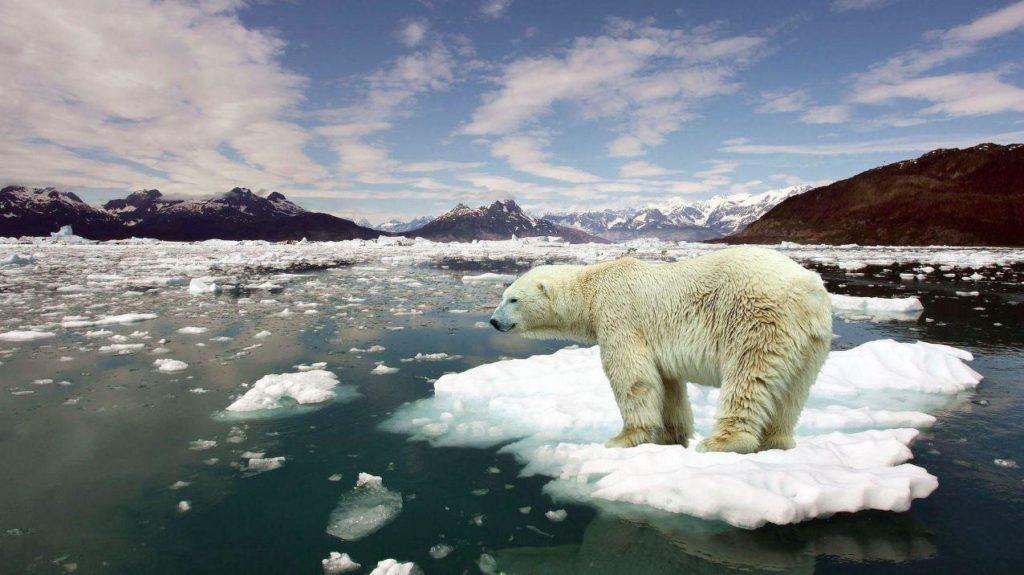 2017 parmi les trois années les plus chaudes jamais enregistrées — Climat