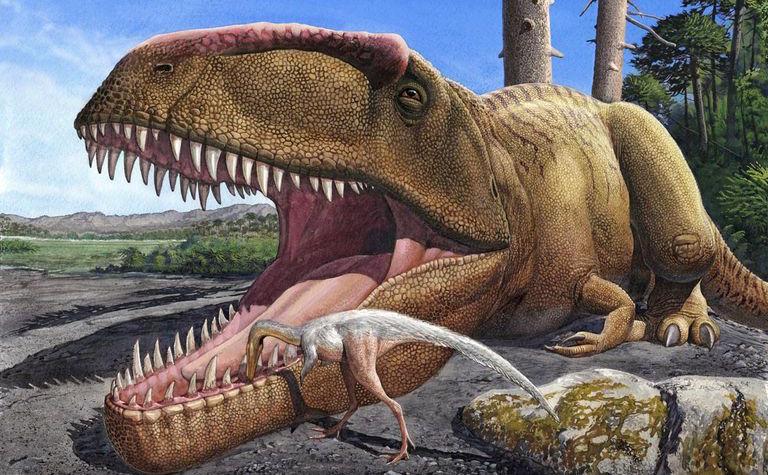 [Jeu] Suite d'images !  - Page 13 Minutenews.fr-lemprunte-du-plus-grand-dinosaure-du-monde-a-ete-retrouvee-en-ecosse-2018-04-03_15-24-03_625698